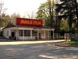 Sudbina Avala filma