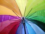 Napadnut gej aktivista Boban Stojanović
