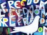 freedom art festival,pancevo