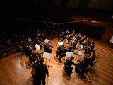 Muzikon orkestar, Kolarac