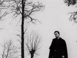 Pol Sreder, Transcendentni film