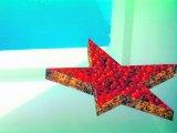 Joksimović u Galeriji FLU